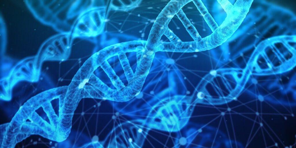 dna, genetic material, helix