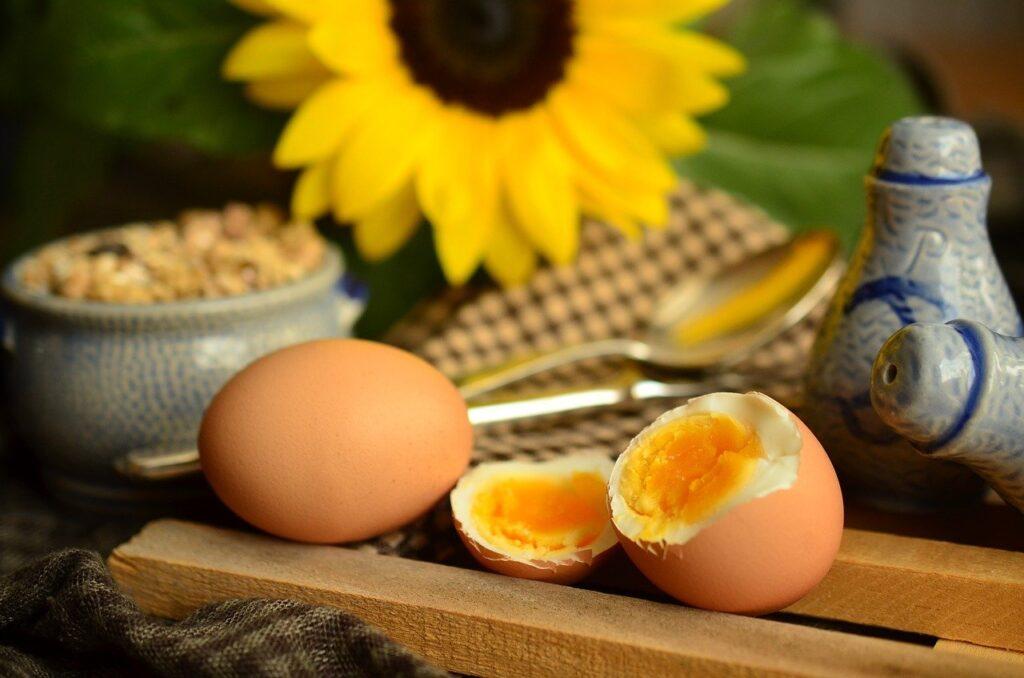 egg, yolk, boiled egg
